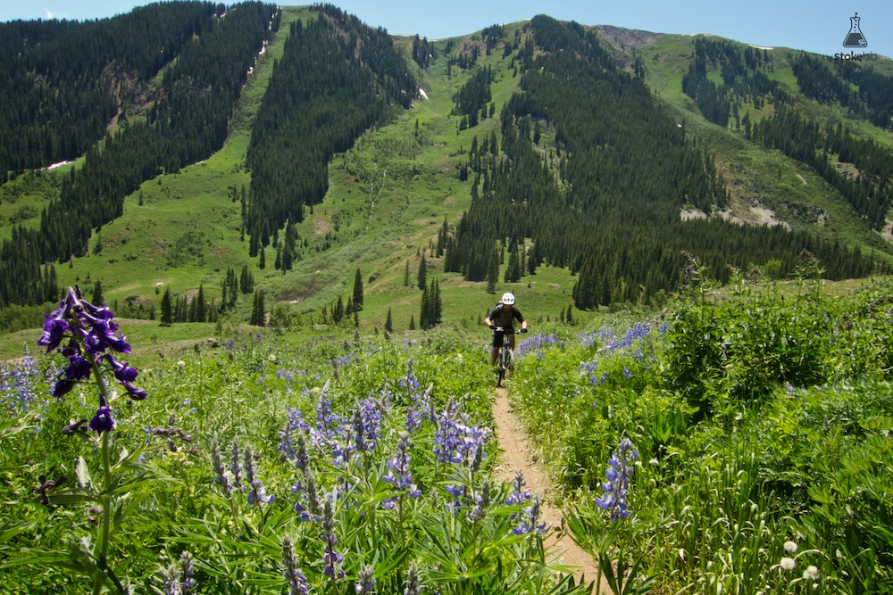 One of Crested Butte's iconic trails, Teocalli Ridge reopened this summer for the first time since being closed a couple years ago for extensive trail rehab. The uphill hurt at least as much as I remembered (~3,500 feet of elevation gain), but it's hard to complain when you're pedaling through wildflower wonderland. Rider: Dennis Annarelli