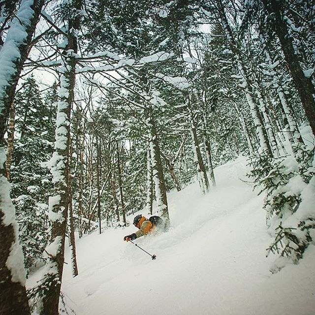 With the storm coming it's time to get back into the woods and shoot some east coast pow skiing. This image of @youngdavevt was originally published in @powdermagazine back in 2007 maybe? #film #slidefilm #provia100f #vermontbackcountry #stokedlife #skivermont #powday #vermontlife #okemobackcountry