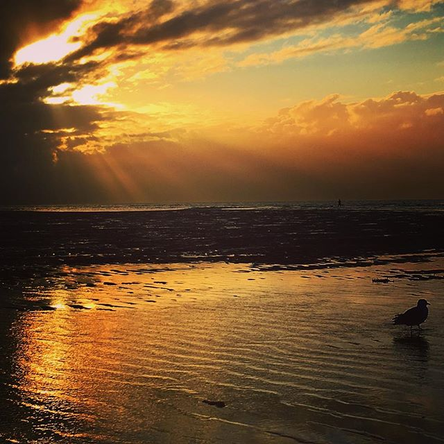 Post Labor Day sunset, Mayflower Beach, MA. #capecod #mayflowerbeach #sunset #stokedlife #backtovermont