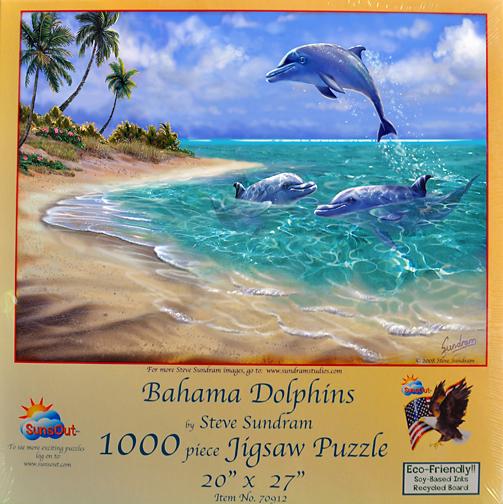 Bahama Dolphins.jpg