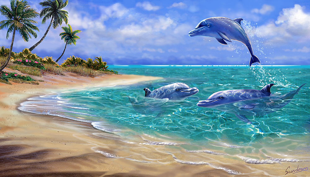 Bahama Dolphins