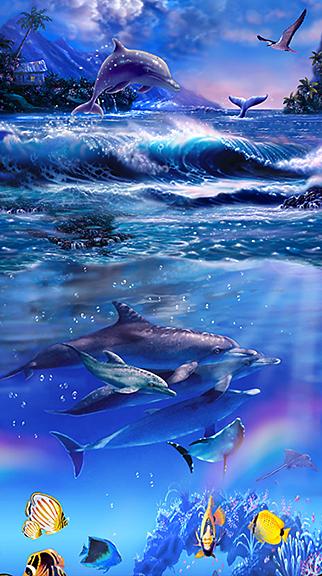 Rainbow Dolphins II