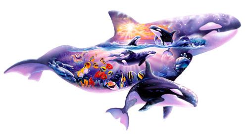 Orca shape Kingdom