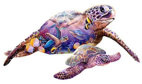 Turtle shape Kingdom