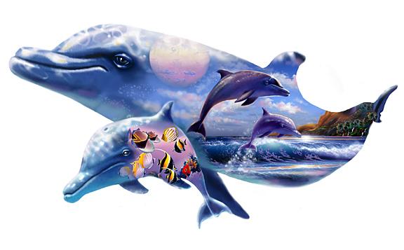 Dolphin shape Kingdom