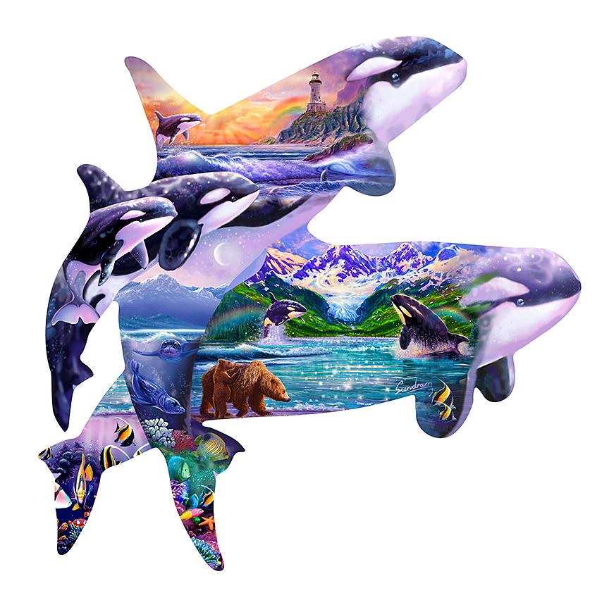 Orca Universe
