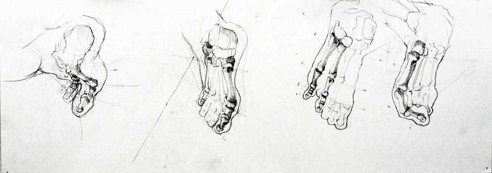 Skeleton-Feet2.jpg