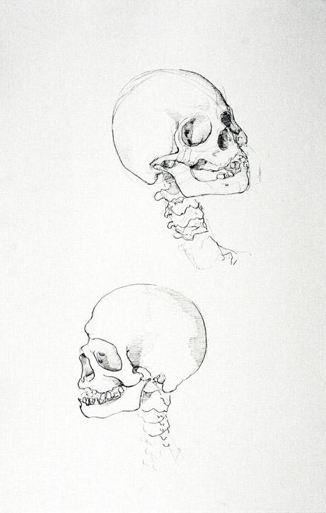 Skeleton-Head2.jpg
