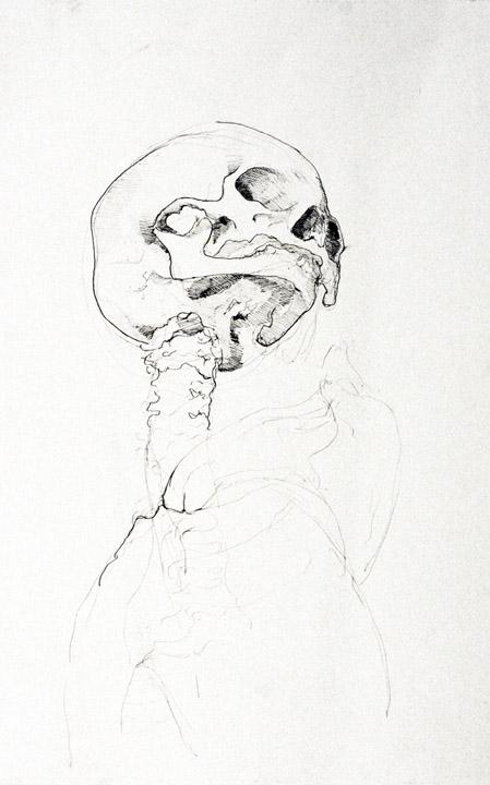 Skeleton-Head3.jpg