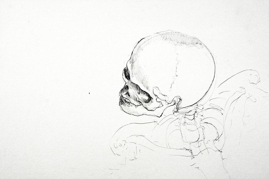 Skeleton-Head1.jpg