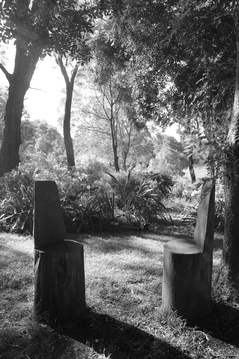 Image By Dwell South Coast -A local landscape in B&W - Called 'Chairs in Conversation'