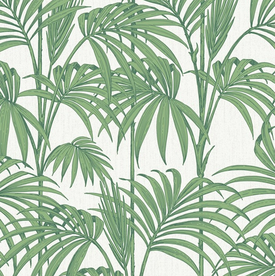 Palm Leaf Wallpaper By Graham Amp