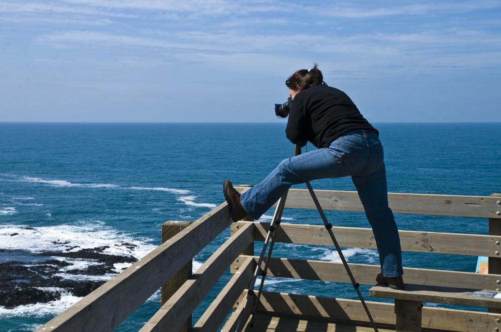 Phillip Island 10_2009_1.jpg