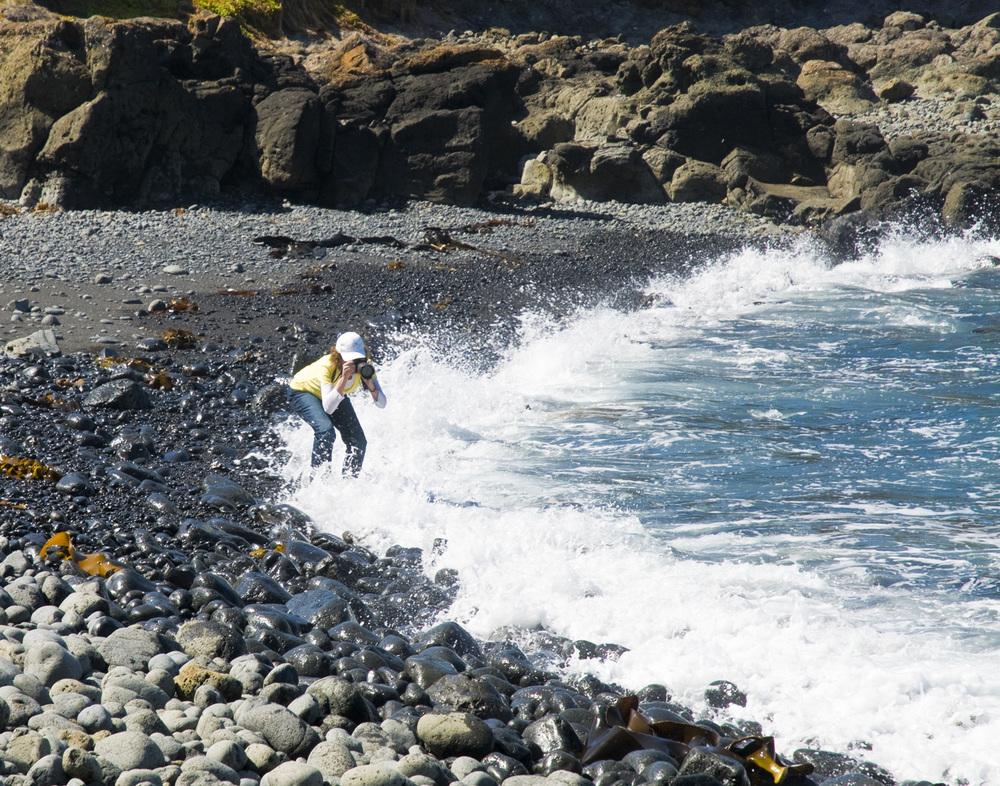 Phillip Island 10_2009_4.jpg