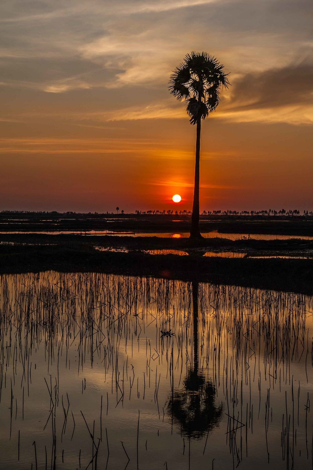 cambodian sunset (1 of 1).jpg