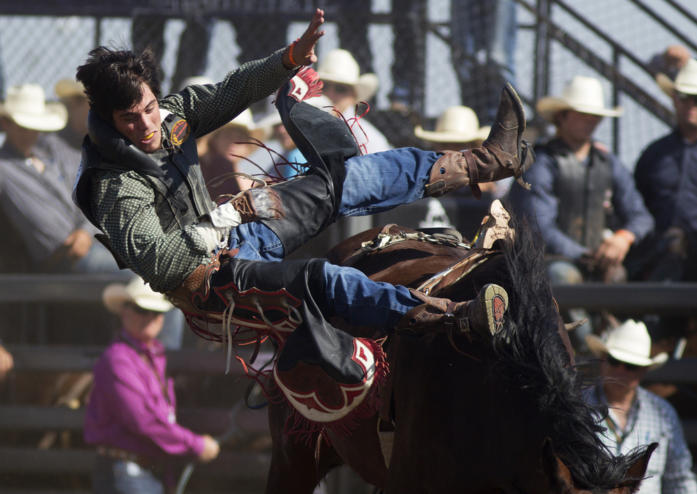 Cole Hewett of Dunning, Nebr., falls off his horse during saddle bronc riding Monday morning at the second performance of the National High School Finals Rodeo at Morningside Park.
