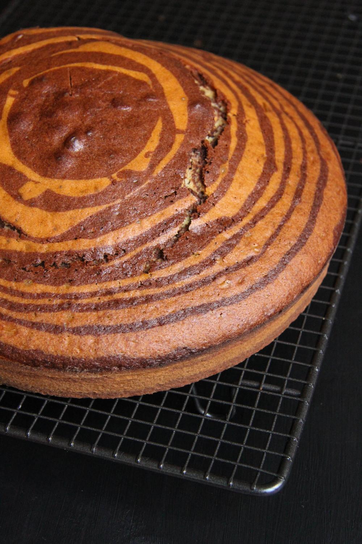 Zebra Cake - The Flying Flour - www.theflyingflour.com_6483.jpg