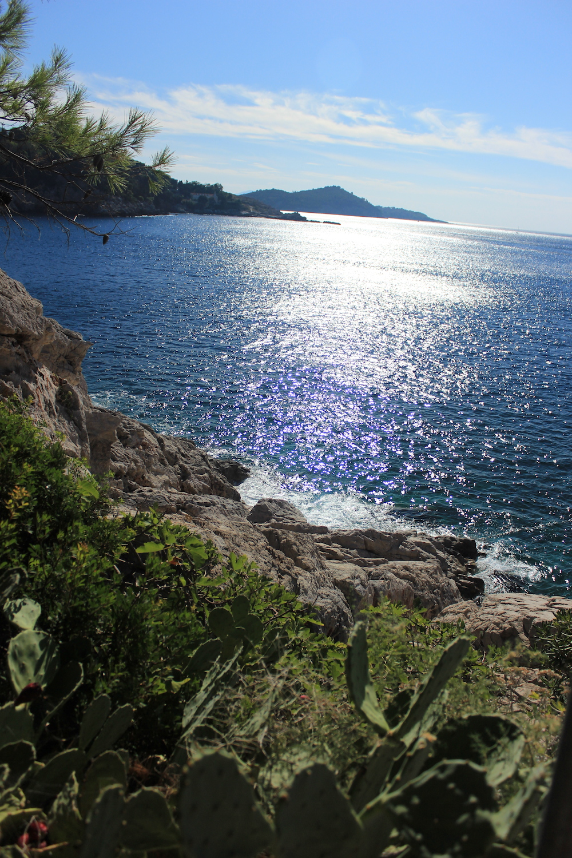 Coastline in Dubrovnik, Croatia | Photo credit: Rose Spaziani