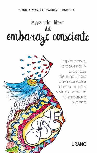 agenda-libro-del-embarazo-consciente_portadaestasi.jpg