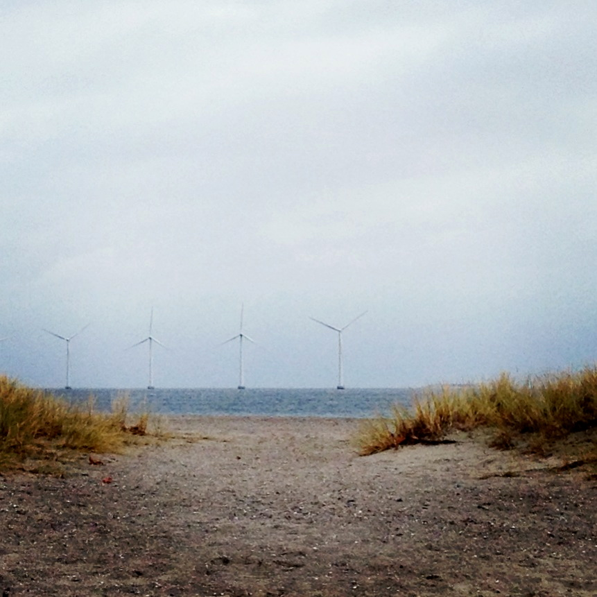 Empty Winter Beach