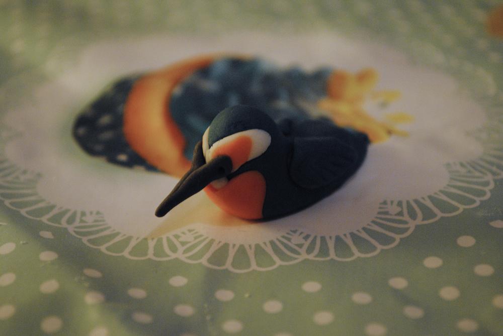 A kool fondant kingfisher