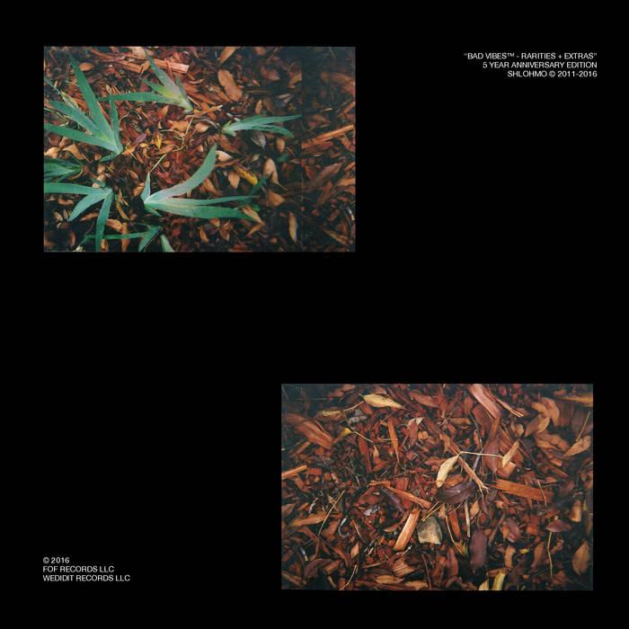 Shlomo: Bad Vibes Rarities + Extras