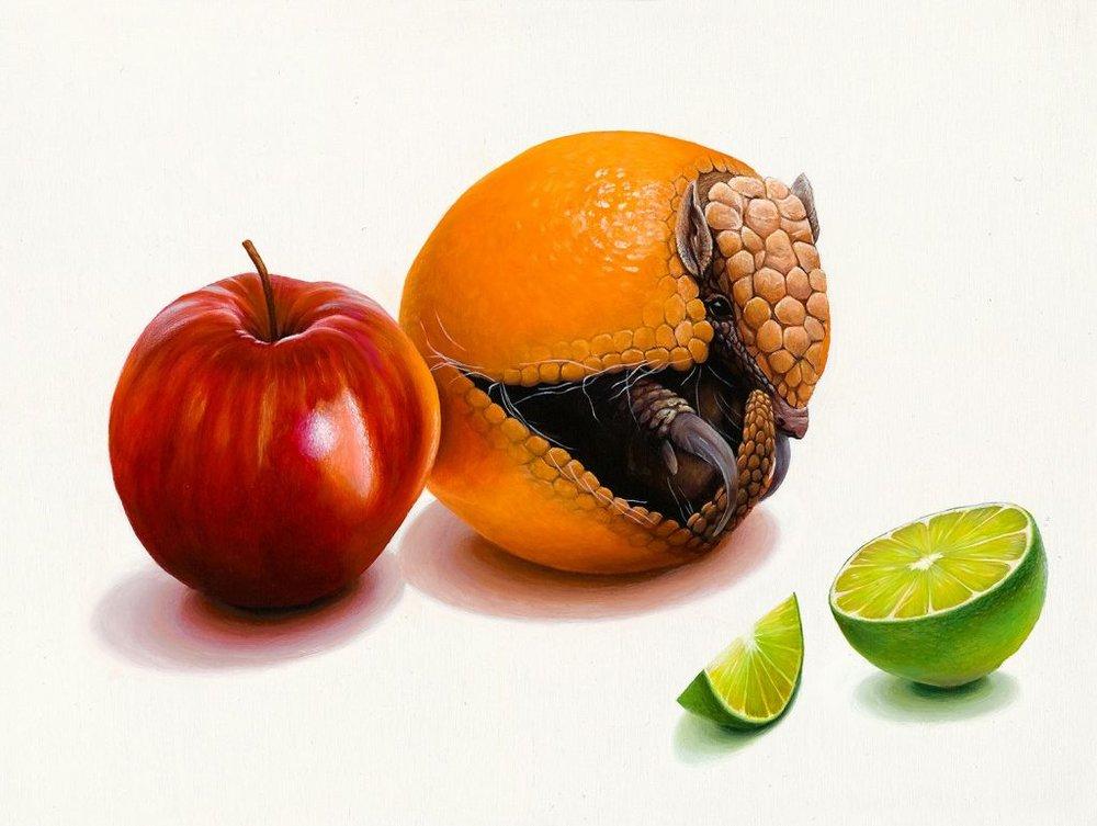 """----------------------""""Not An Orange""""--------------------.jpeg"""