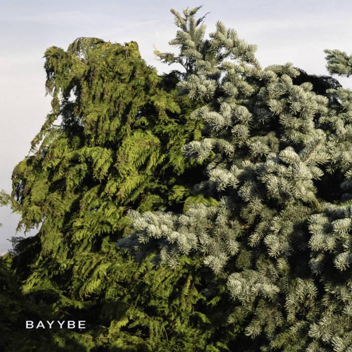 Bilo 503: Bayybe
