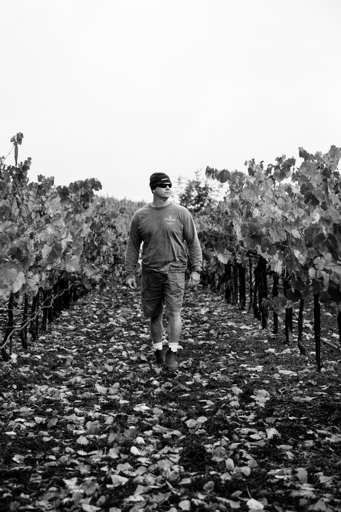 Hal Schmitt walking through vineyard