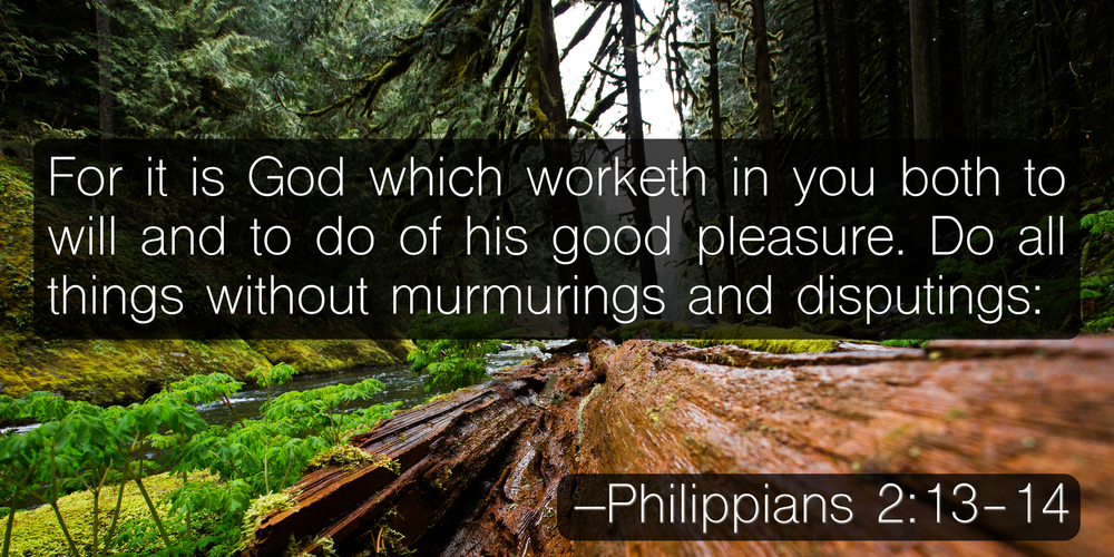 For it is God which worketh in you both to will and to do of his good pleasure. Do all things without murmurings and disputings: –Philippians 2:13-14