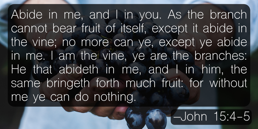 Abide in me, and I in you. As the branch cannot bear fruit of itself, except it abide in the vine; no more can ye, except ye abide in me. I am the vine, ye are the branches: He that abideth in me, and I in him, the same bringeth forth much fruit: for without me ye can do nothing. –John 15:4-5