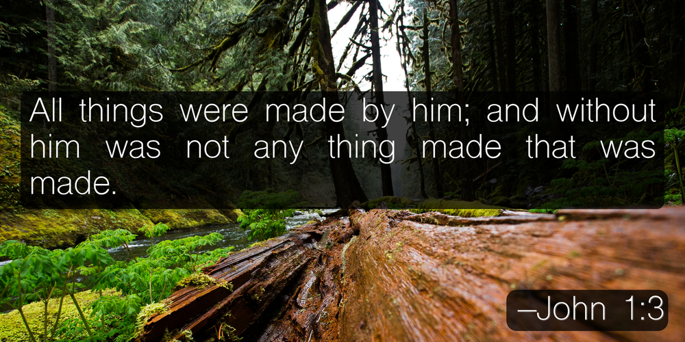 All things were made by him; and without him was not any thing made that was made. –John 1:3