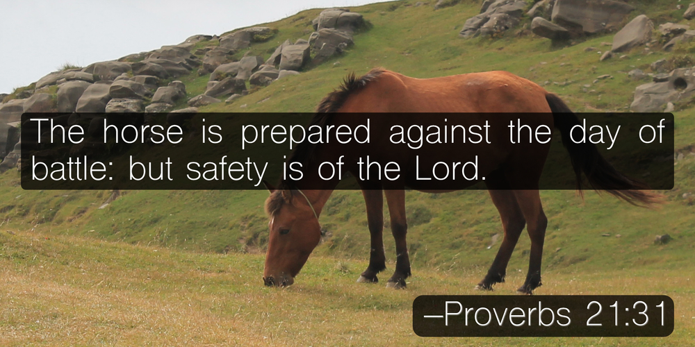 The horse is prepared against the day of battle: but safety is of the Lord. –Proverbs 21:31