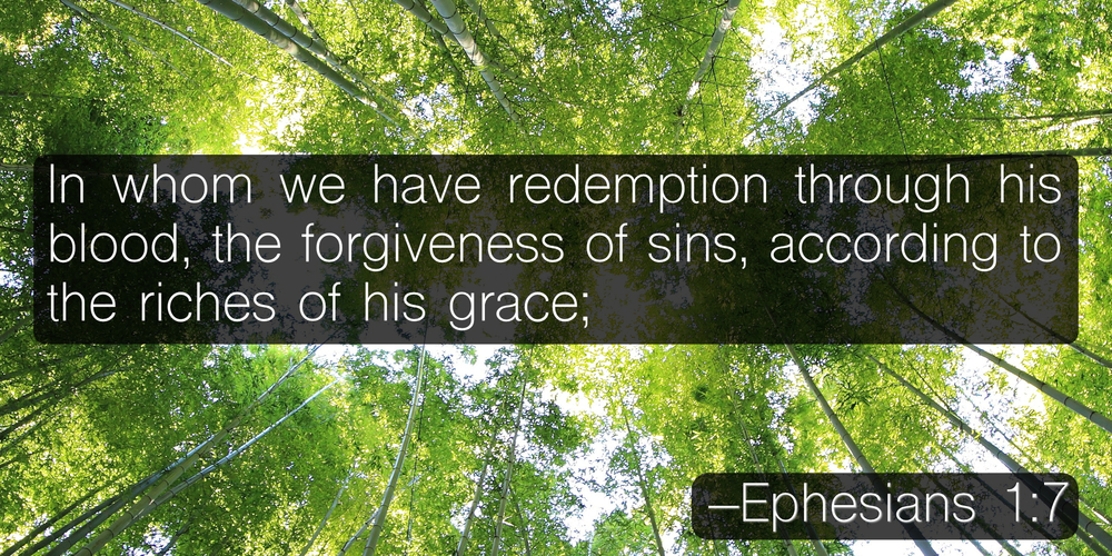 In whom we have redemption through his blood, the forgiveness of sins, according to the riches of his grace; –Ephesians 1:7
