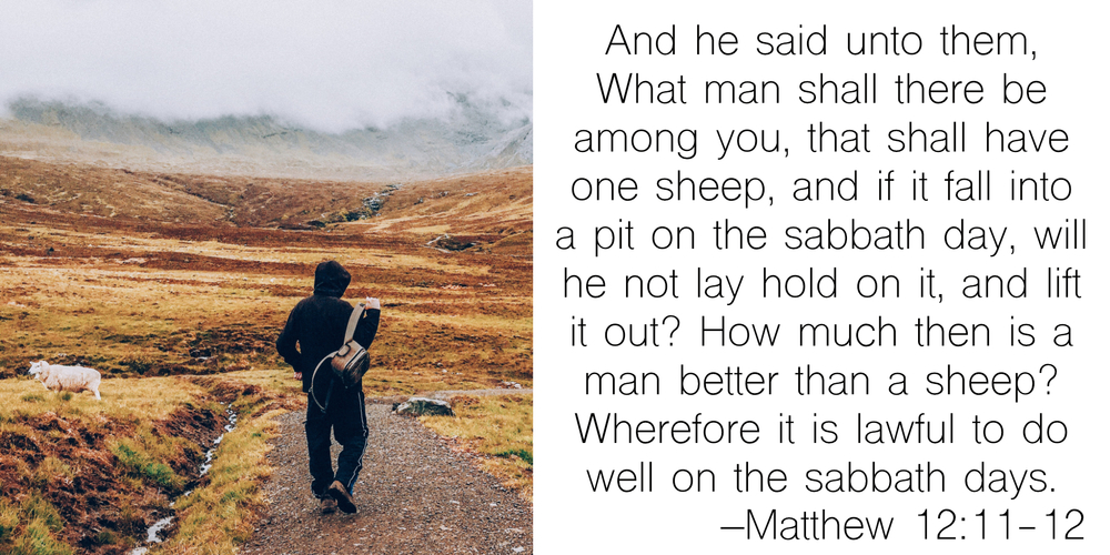 Matthew 12_11-12.jpg