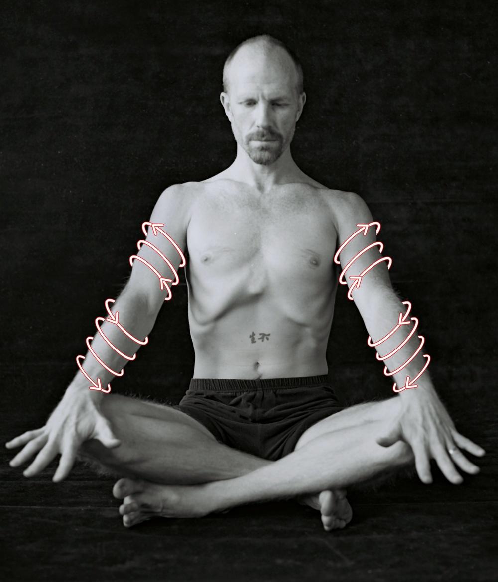 arm spirals.jpg