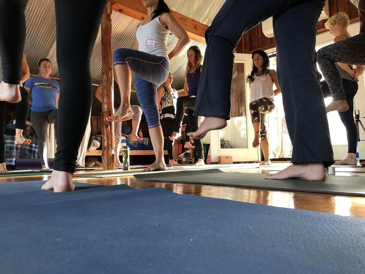 Yoga Teacher Training -