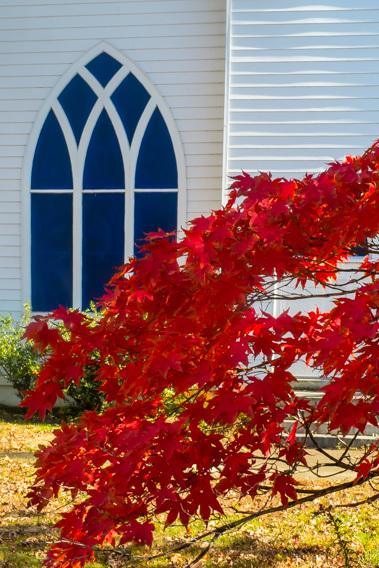 IPC in Fall, photo by Jim Cassatt