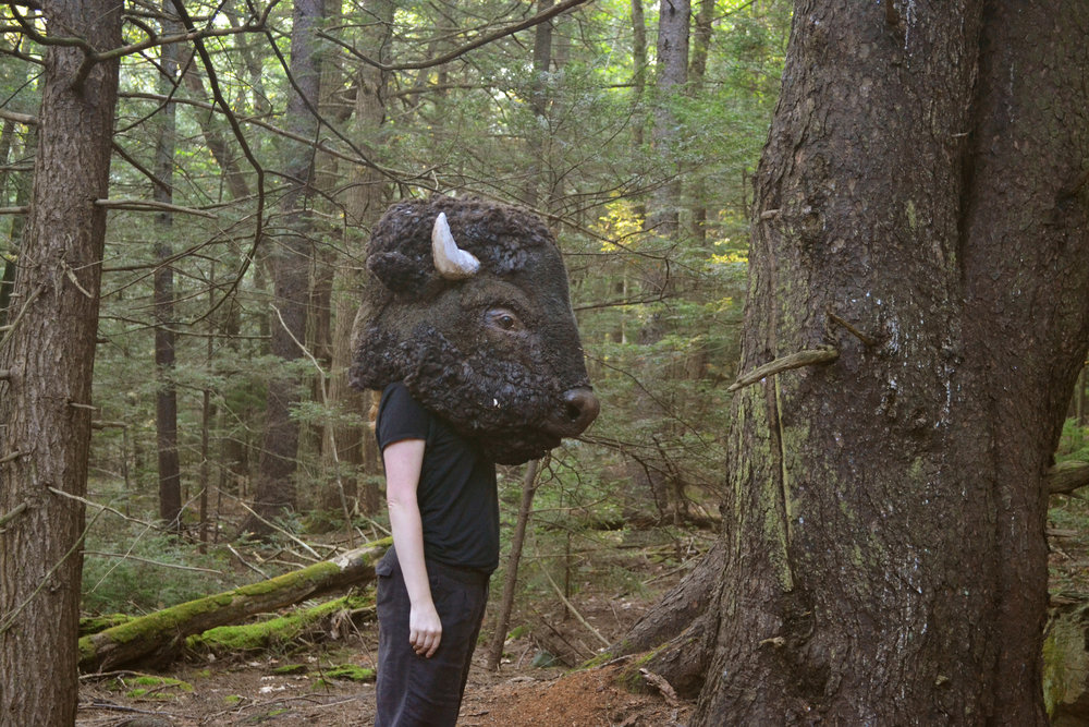 Rewilding Platte Clove,   The Catskill Mountains, Ongoing Performance Series, 2014
