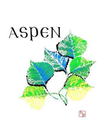 aspen10.jpg
