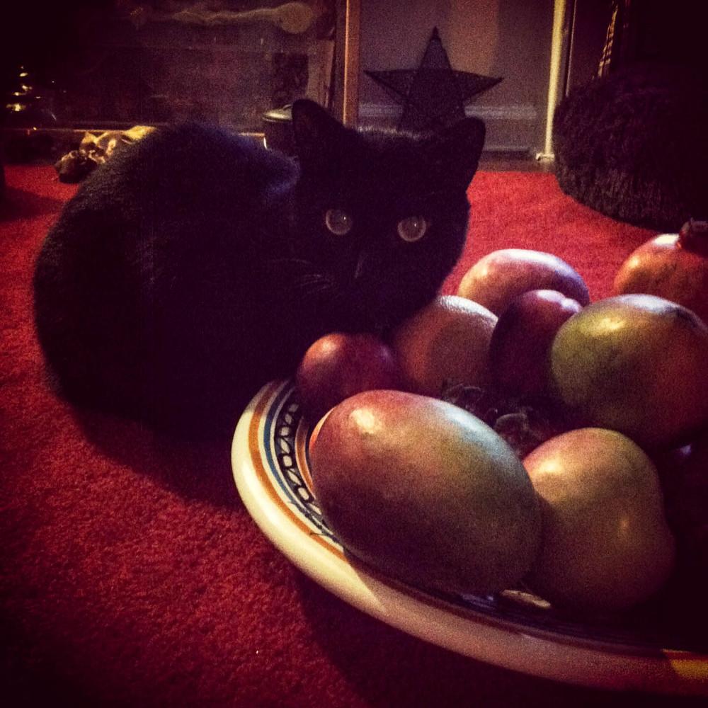 Belilli Protectress of Fruit