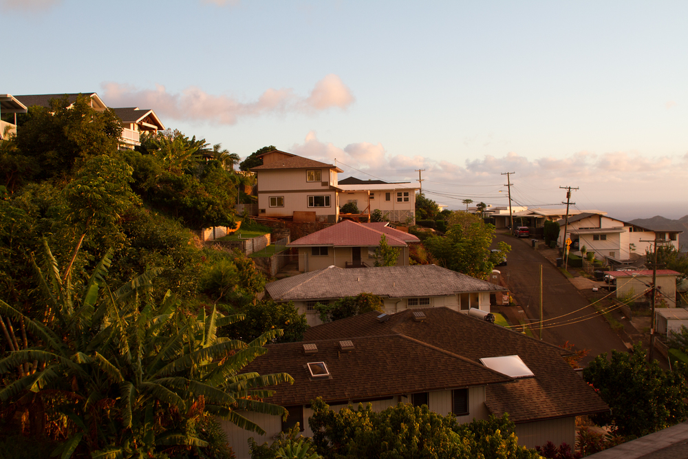 HI2011-3.jpg