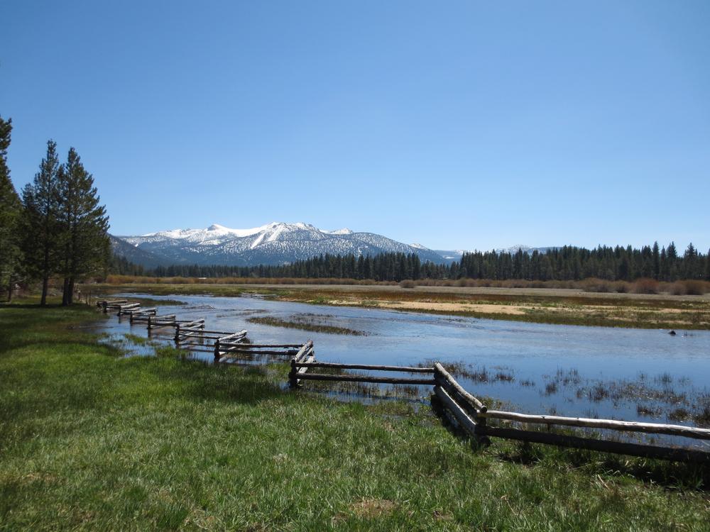 Tahoe-4.jpg