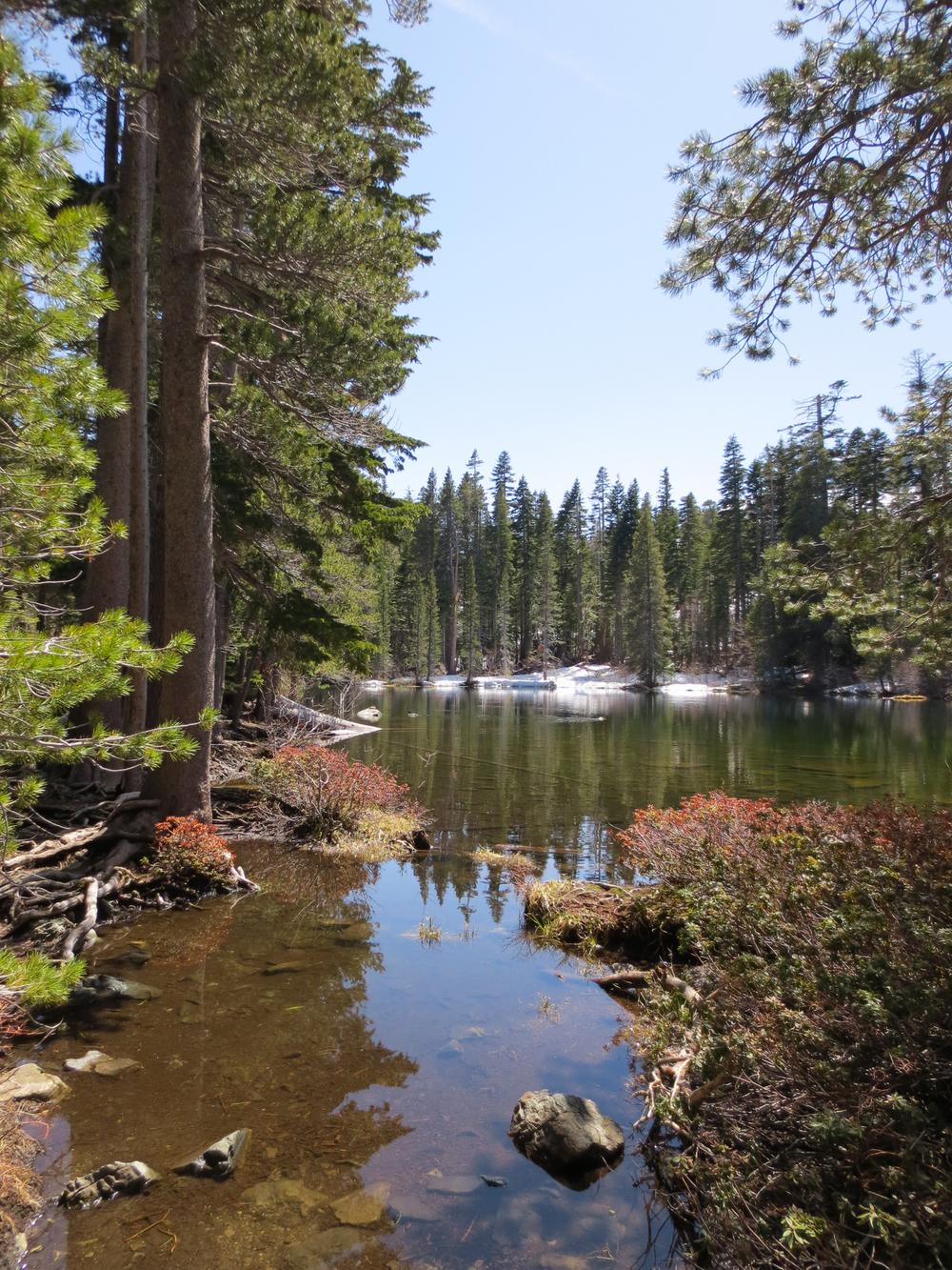 Tahoe-7.jpg