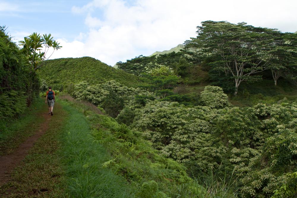 Kauai-6.jpg