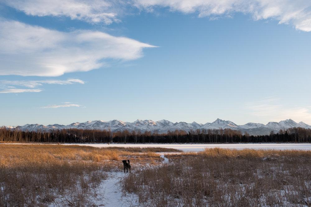 PiperHanson_AlaskaWinter-11.jpg