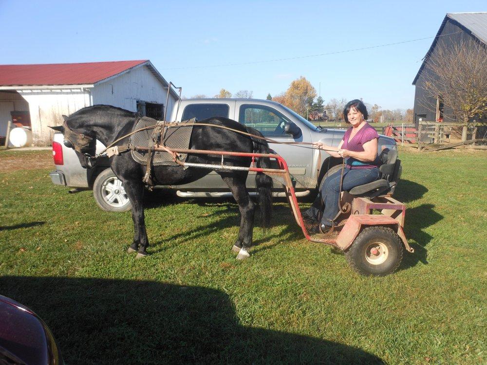 Lexi driving Cart.jpg