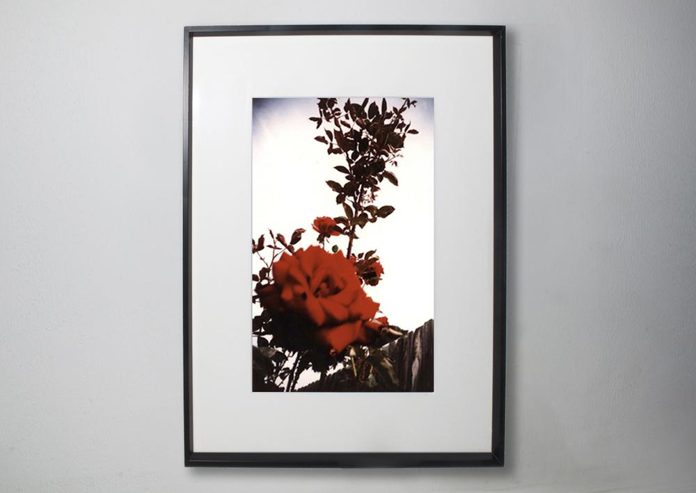 framed example.jpg
