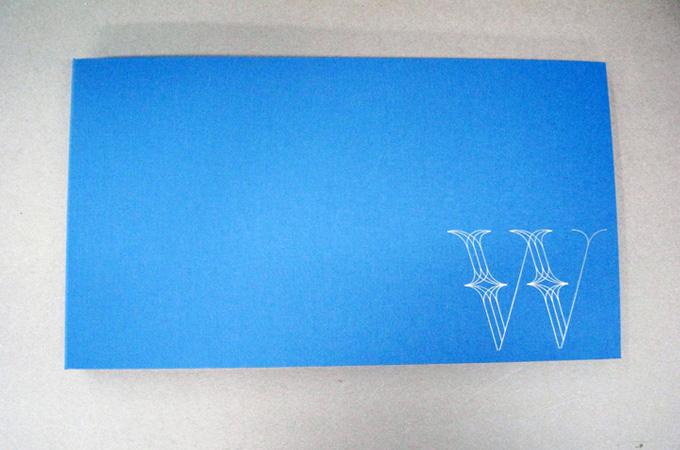 Blue Branded Portfolio Book