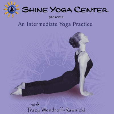 Instructional Yoga Dvd The Yoga Lifestyle With Tracy